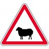 a15a2_passage_animaux_domestique_metropole_equipements