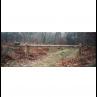 barriere-forestiere-bascuante-levante