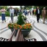 jardiniere_esferia_2_png